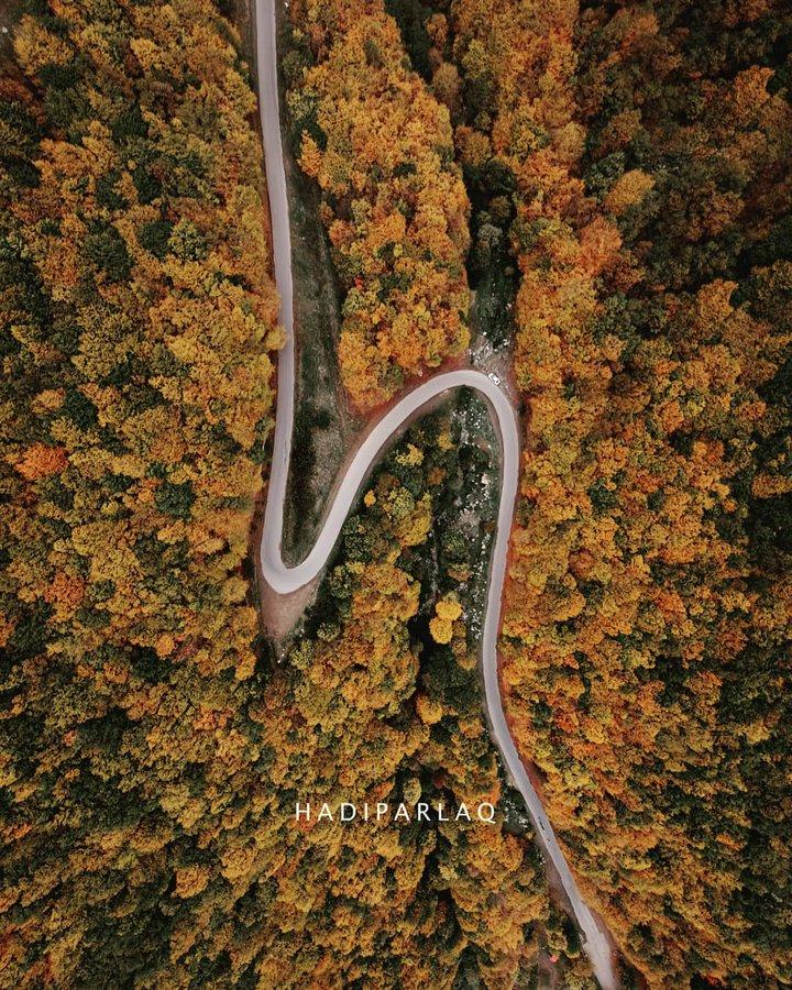 پاییز زیبا در جنگلهای ارسباران+عکس