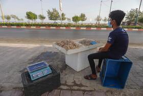 کاهش درآمد ساحل نشینان