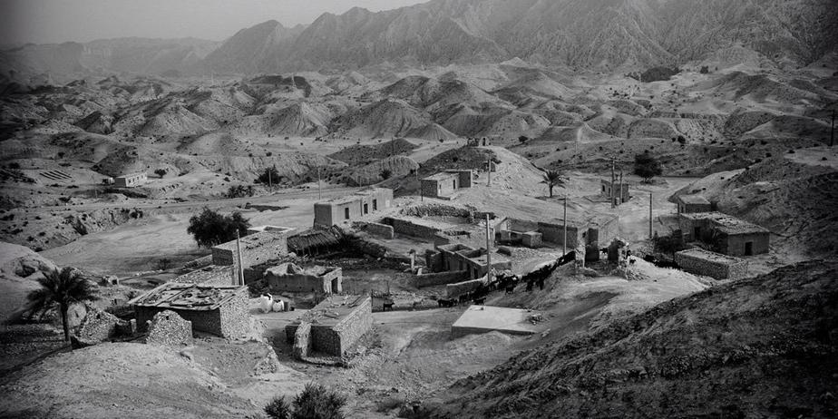 خشکسالی و تبعات آن در بوشهر/ تصاویر