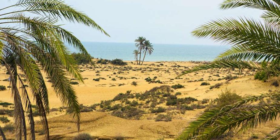 ساحل و روستای شگفت انگیز «دَرَک» زرآباد / تصاویر