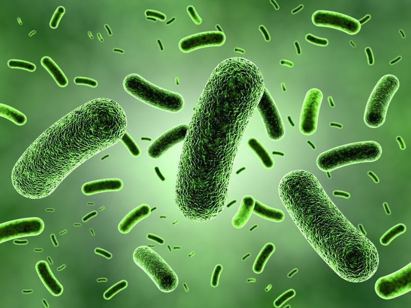 اثر نامطلوب داروهای متداول بر میکروبهای ارزشمند روده