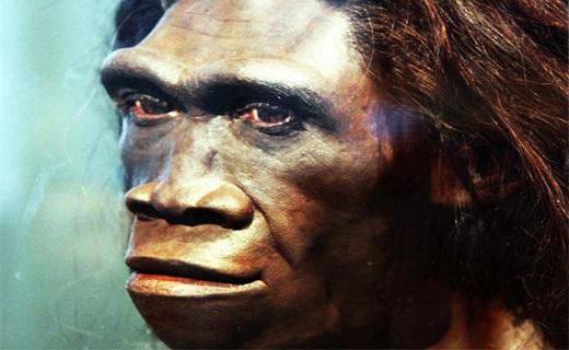کدام نژاد از بشر به دلیل تنبلی منقرض شدند؟+عکس