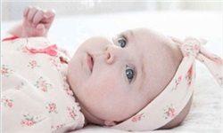 تولد نوزاد عجول در ال90