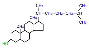 کلسترول، ابتلا به آلزایمر را افزایش میدهد