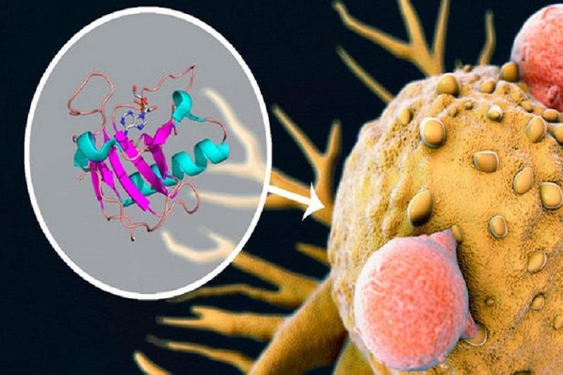 ترکیب دو دارو برای مقابله موثرتر با تومورها
