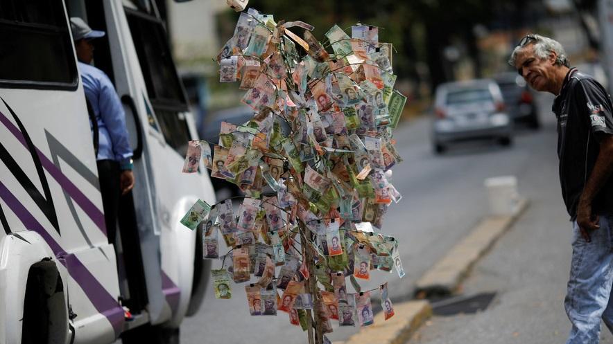 مردم ونزوئلا درخت پول واقعی ساختند+ عکس