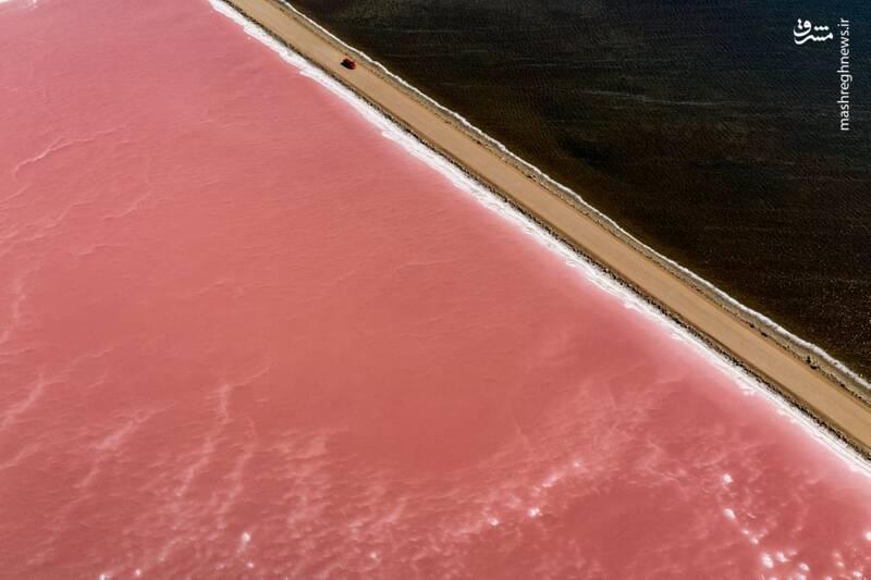 دریاچه ای زیبا به رنگ صورتی + عکس