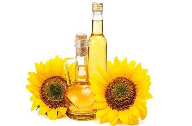فواید روغن آفتابگردان در تقویت سیستم ایمنی و درمان آکنه