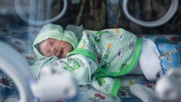 نقش تغییرات باکتری روده در رشد ناقص نوزادان زودرس