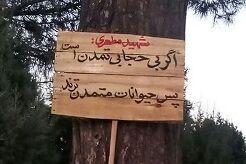 این تابلوهای خاص به تهران میآیند + عکس