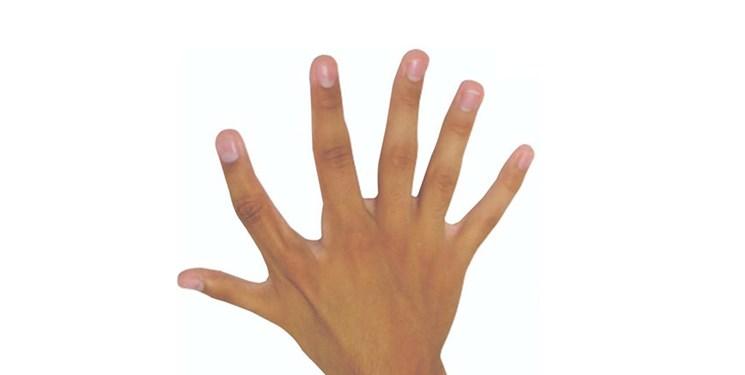 انگشت ششم مفید است