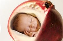 آب انار از مغز جنین حفاظت میکند