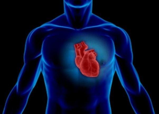 ارتباط ازدست دادن دندانها و بیماری قلبی