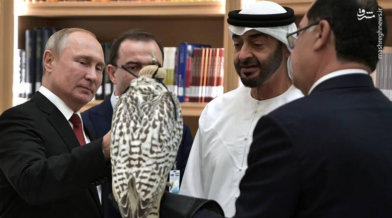 هدیه کمیاب پوتین به ولیعهد ابوظبی +عکس