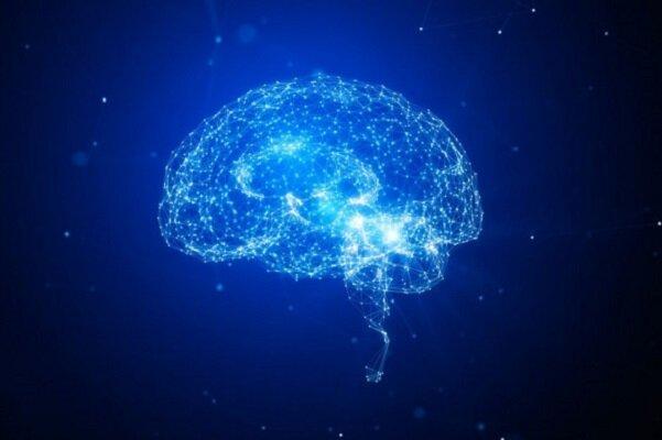 افکار شما مغزتان را تغییر فیزیکی میدهد!