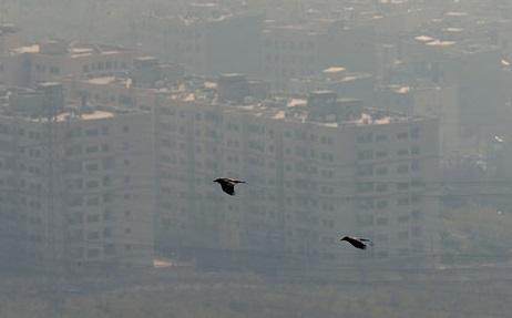 تصاویر ناراحت کننده آلودگی هوای تهران +عکس