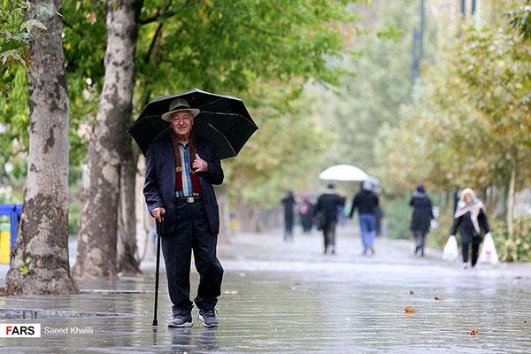 تصاویر متفاوت از تهران بارانی +عکس