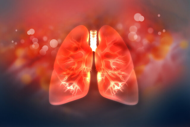تهیه نخستین نقشه مولکولی از ریه برای کمک به بازسازی آن