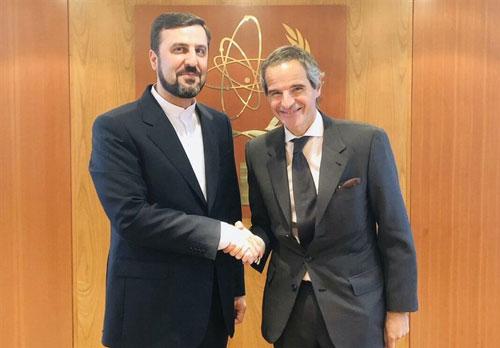 دیدار نماینده ایران با مدیرکل آژانس انرژی اتمی +عکس
