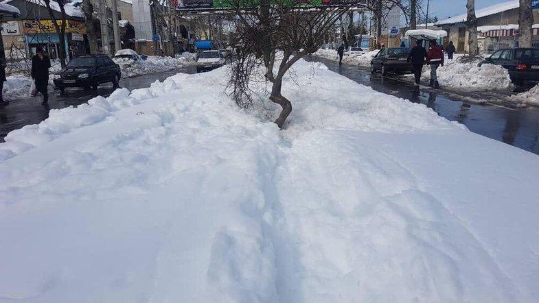 رشت این طور زیر برف رفت +عکس
