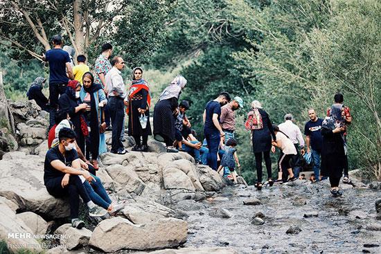 جمعیت باورنکردنی در گنجنامه همدان +عکس