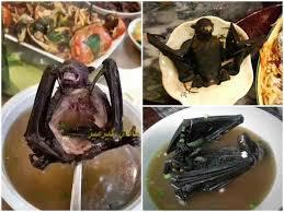 وحشت خانواده چینی از سوپ خفاش+عکس
