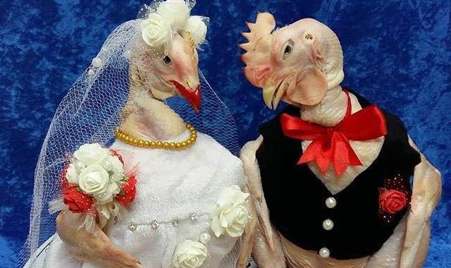 تزئین یخچال عروس ایرانی سوژه شد+عکس