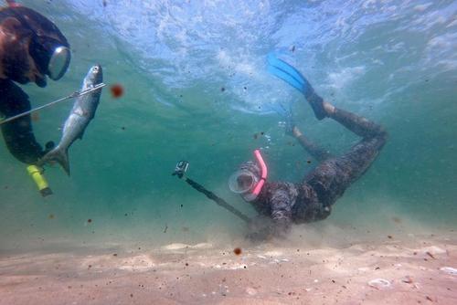 ماهیگیری با نیزه در ساحل غزه + عکس