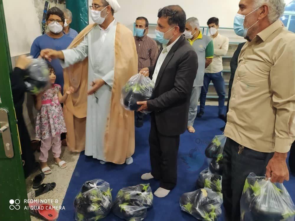 توزیع بادمجان به عنوان کمک معیشتی در بوشهر+عکس