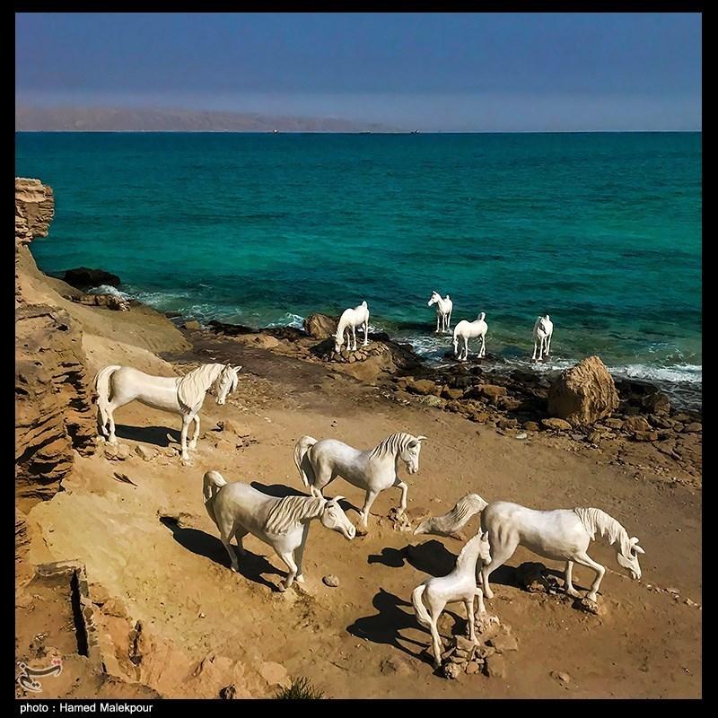 مجسمه های فوق العاده خلیج فارس+عکس