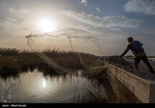 ماهیگیری کنار جاده شادگان+عکس