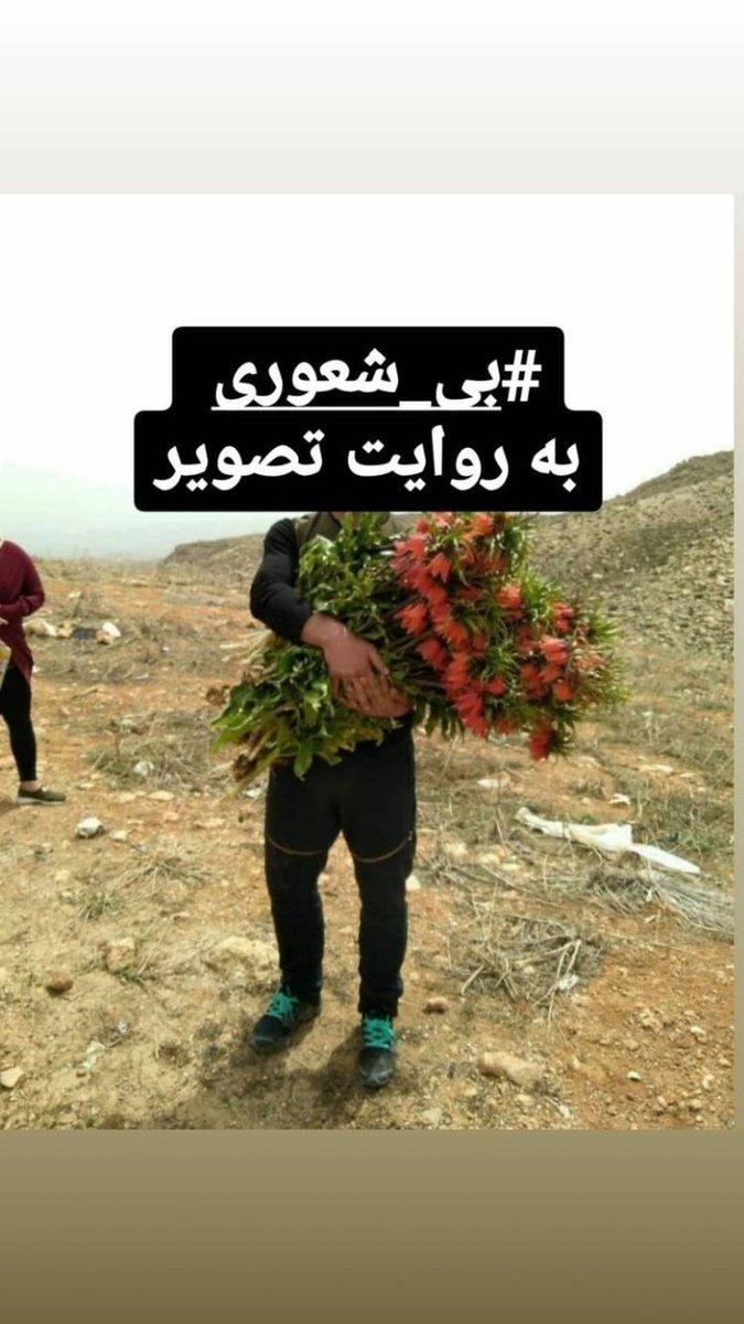حرکت خجالت آور یک مرد در کوهرنگ جنجالی شد+عکس