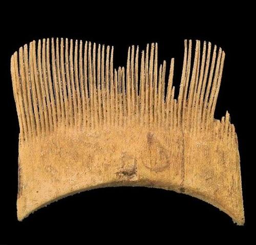 شانه پنج هزار ساله ایرانی+عکس