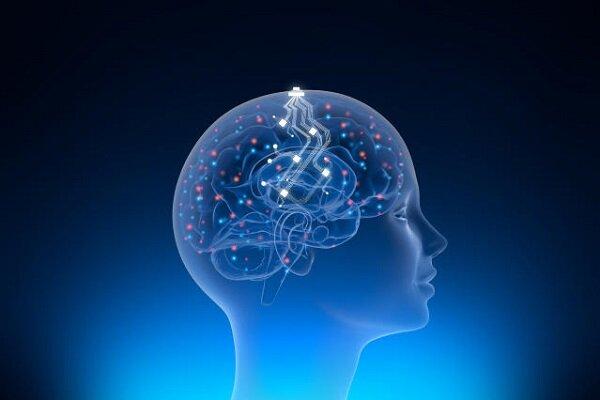 بحران مدیریتی در شرکت فناوری عصبی  ایلان ماسک