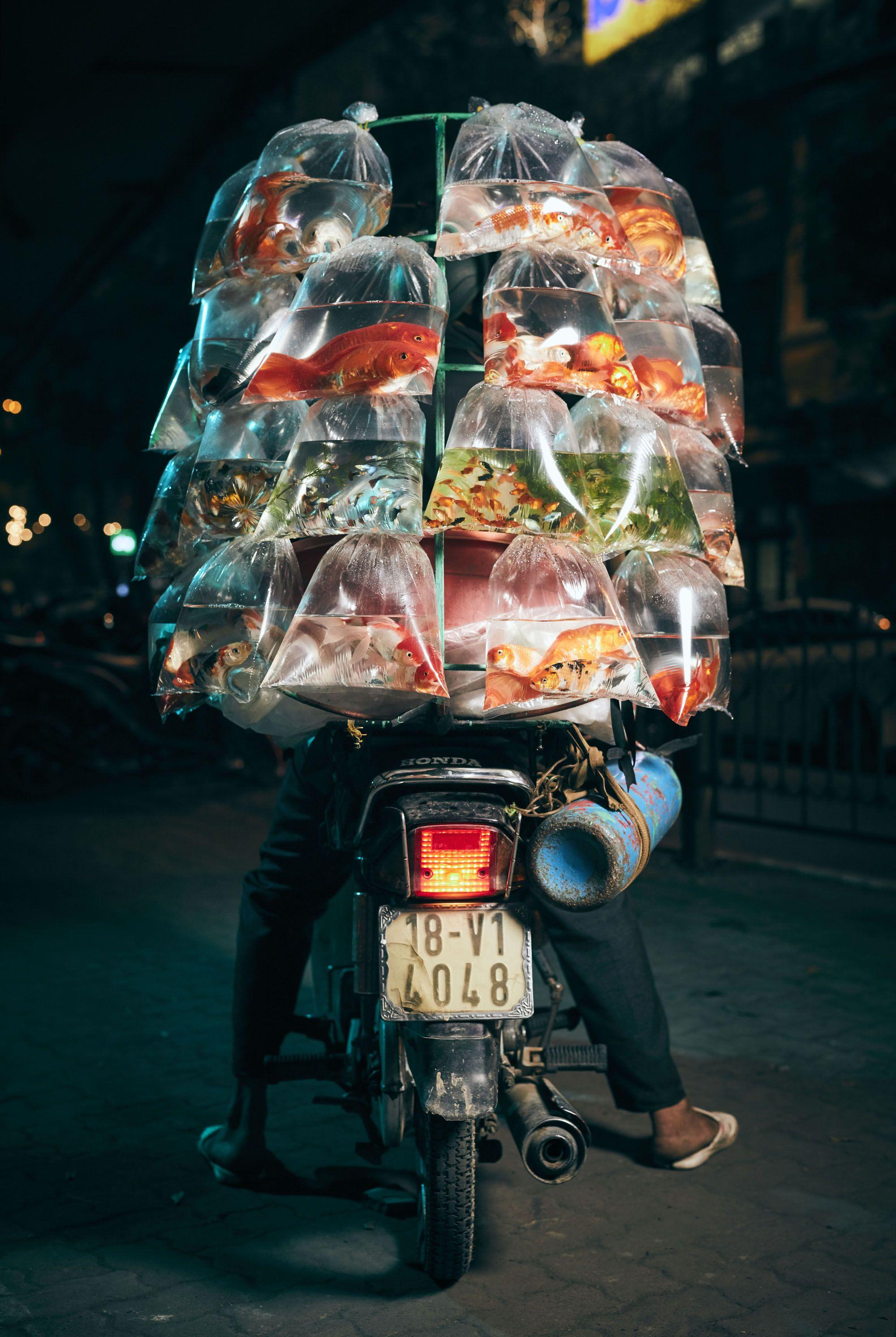تصویر جالب از ماهی فروش موتورسوار+عکس