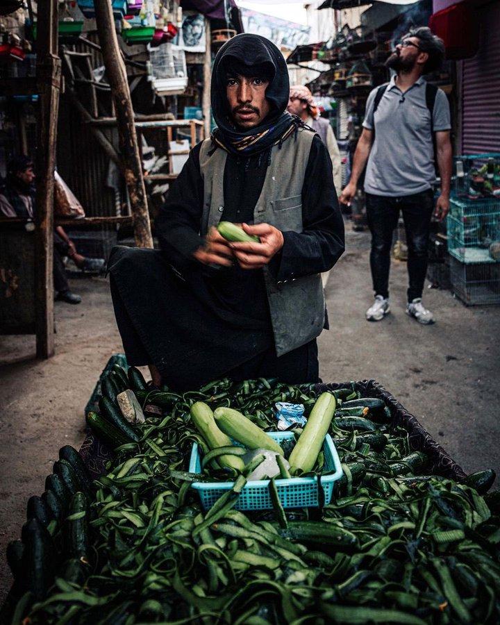 تصویر جالب از خیارفروش دوره گرد در کابل+عکس