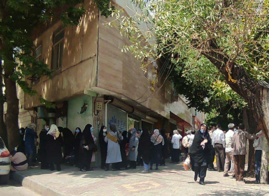 صف خجالت آور مرغ در همدان+عکس