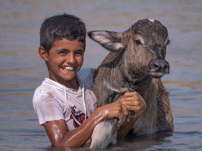 زیباترین تصویر از لحظه  رهاسازی آب در هورالعظیم+عکس
