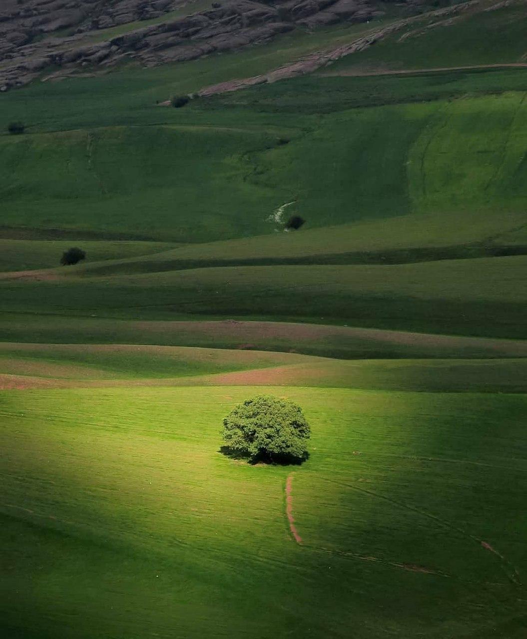 طبیعت چشم نواز لرستان+عکس