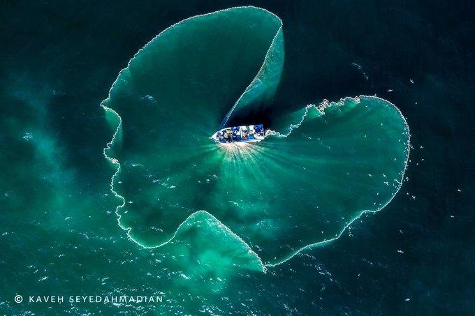 تصویر هوایی از صید ماهی ساردین در جزیره قشم+عکس